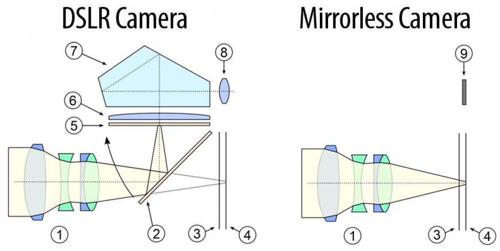 máy ảnh mirrorless là gì