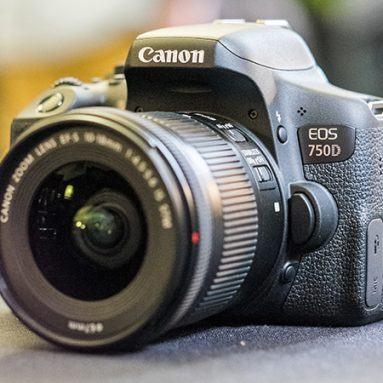 Nên mua máy ảnh DSLR nào cho người mới? Cách chọn mua DSLR